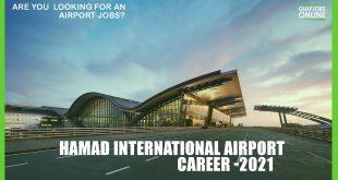 hamad international airport career
